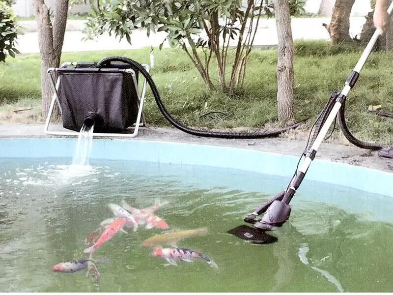 Dịch vụ vệ sinh bể cá koi Đà Nẵng